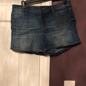 New York & Company Denim Shorts